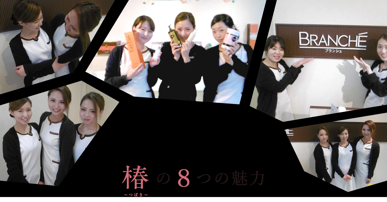 椿の8つの魅力